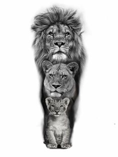 # Tätowierung für Männer tattoo quotes tattoos tattoos tattoo fonts for men meaningful quotes quotes about life quotes latin quotes motivational Lion Head Tattoos, Mens Lion Tattoo, Wolf Tattoos, Men Tattoos, Men Tattoo Quotes, Lion Tattoo Sleeves, Sleeve Tattoos, Lion Sleeve, Animal Sleeve Tattoo