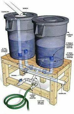 Recycling rain water