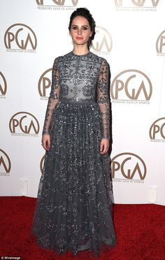 Sparkling: Actress Felicity Jones wore a beautiful smokey grey Valentino Pre-Fall 2015 gown with sheer sleeves at the Producers Guild Awards