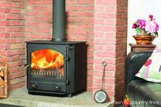 Glaisdale Multi fuel stove - wood burning stove