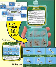 Complete Hatch - Mayfly Species, Original Patterns, Fly Fishing Instructions, Match the Hatch, Trout Fishing, Fly Tying