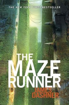 My daughter and I enjoyed the Maze Runner series as well.  Apparently the books for teens all have a very disturbing theme, distruction, chaos, murder, death, crazy people, utopias...and I enjoyed them, I must be a little twisted!