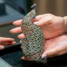 "钱广涛 on Instagram: ""Chopard 萧邦高级珠宝 印度孔雀🦚手镯 #chopard #chopardjewelry #choparddiamonds"" Chopard, High Jewelry, Fingerless Gloves, Arm Warmers, Fashion, Fingerless Mitts, Moda, Fashion Styles, Fingerless Mittens"