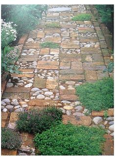 Garden Paving, Garden Paths, Garden Art, Garden Shrubs, Back Gardens, Outdoor Gardens, Indoor Garden, Landscape Edging Stone, Pathway Stone