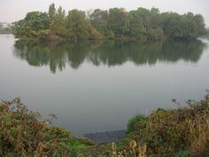 Walthamstow Resevoirs - for a lovely walk ending in Springfield park nature reserve, or you can go there to fish carp