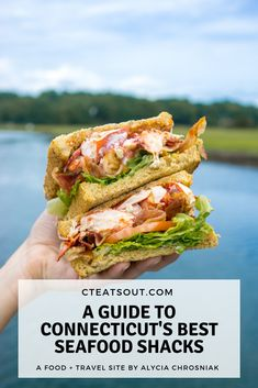 Fun Fact: Connecticut is the birthplace of the hot lobster roll. Enjoy all the ways Connecticut lobster is served throughout the state! Lobster Roll Recipes, Seafood Recipes, Cooking Recipes, Healthy Recipes, Lobster Dishes, Fish Dishes, Seafood Delight Recipe, State Foods, Best Food Ever