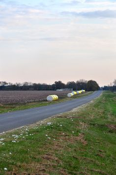 Bales of cotton on a country road in Noxubee County Mississippi