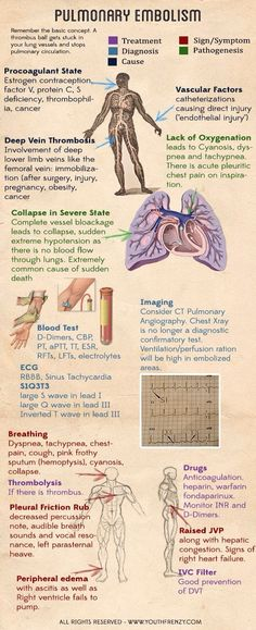 What Is Anatomy and Physiology? | study skills | Pinterest | Anatomy ...