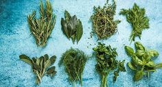 Herbs 101: An A