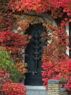 Beautiful black door and fall colors.     .....rh