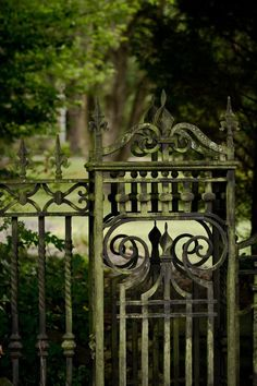 verde---➽viridi➽πράσινος➽green ➽verde➽grün➽綠➽أخضر ➽зеленый Old Gates, The Secret Garden, Secret Gardens, Purple Home, Wrought Iron Gates, Iron Work, Fence Gate, Secret Places, Garden Photos