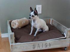 Caja-con-ruedas-como-cama-para-el-perro