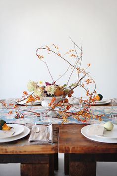 Gourds and whispy branches for a beautiful fall still-life tablescape | Thanksgiving Decor | Runaway Apricot