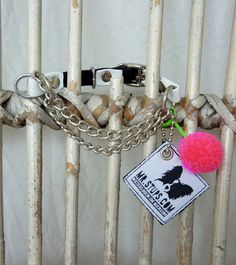 Popeye`s,Schmuck-Halsband,Rocky,Basic,Hundehalsband, Bettelarmband, dog necklace, bracelet, leather, Leder