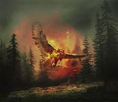 L'oiseau Crédits des images : http://laura-graph.deviantart.com/