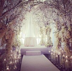 "Indoor Wedding Ceremony Decorations Your wedding will probably prove to be one of the most elaborate ""planned"" events of your life, so naturally you want to make sure that everything go… Wedding Ceremony Ideas, Wedding Venues, Wedding Aisles, Backdrop Wedding, White Cherry Blossom, Cherry Blossom Wedding, Cherry Blossoms, Decoration Inspiration, Wedding Inspiration"