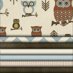 Baby boy owl nursery theme
