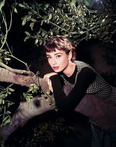 Audrey Hepburn in Sabrina. Such a classic beauty Katharine Hepburn, Audrey Hepburn Mode, Divas, Brigitte Bardot, Classic Hollywood, Old Hollywood, Photo Portrait, Classic Beauty, Classic Chic