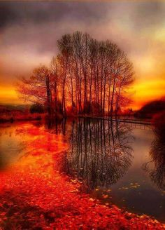 Fall reflections..