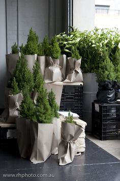 melbourne cafes photo blog: pop up cafe @ design files open home