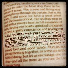 Hebrews 10:23, via Lindsey Borgna. Press on & trust in the God who never lets you down.