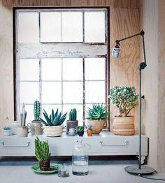 Selecionados especialmente para o Casa.com.br pela equipe do Pinterest, estes arranjos, salas e áreas externas possuem duas coisas em comum: charme e suculentas