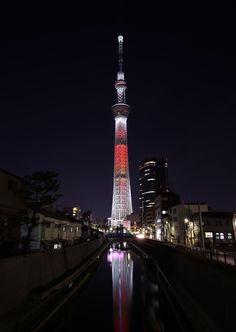 Tokyo City, Tokyo Japan, Anime Land, Japanese Tree, Japan Landscape, Tokyo Skytree, Dark City, Japan Photo, Japan Travel