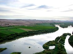 UPINGTON.COM - Oranjerivier Wine Cellars | Green Kalahari Wine Routes | Northern Cape | Green Kalahari | South Africa