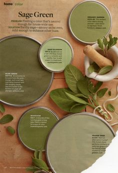 sage green paint colors via bhg com color in
