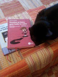 Un gato que no sabe cuál de los dos libros escoger: ¿Ya está el listo que todo lo sabe o Vuelve el listo que todo lo sabe? (Foto gentileza de Nandy Recio)