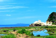 """View of Kapurpurawan Rock The most famous cove in Ilocos Norte is the Kapurpurawan Beach, which means """"white rock."""" It is a massi. Philippines, Formations Rocheuses, Ilocos, Selling Photos, Landscape Photographers, Natural Wonders, Geology, Beautiful Places, Stock Photos"""