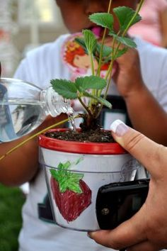 Strawberry plant in a pot they painted! Favor & Activity!!