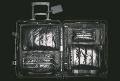 The sexiest suitcase you've ever seen