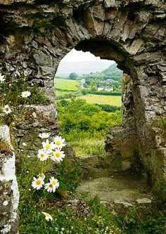 Looking through the portal at Dunamase Castle, in eastern Ireland Oh The Places You'll Go, Places To Visit, Yorkshire Dales, Ireland Travel, British Isles, Belle Photo, Dream Vacations, Beautiful Landscapes, Wonders Of The World
