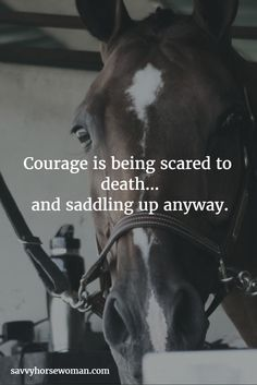 Courage is being scared to death... and saddling up anyway.