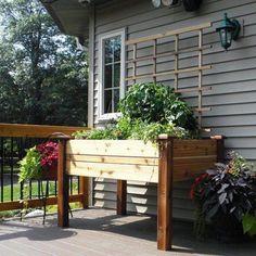 Gronomics Cedar Elevated Planter Box
