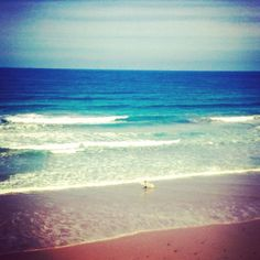 Surfer at Jan Juc Beach #beach #surf #surfer #surfculture #ocean #water #waves #sand #oceanlove #outdoors #nature #natureaddict #janjuc #greatoceanroad #explore #board #surfcoast #beachlife. #swell #beautiful #australia by addyblackphotos