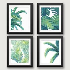 - Item Description - About - Shipping Inspired by international travel through some of the worlds most vibrant jungles, these luscious and green tropical art prints of a banana tree, a palm tree, a mo