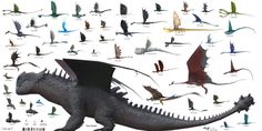HTTYD Size Chart (School of Dragons Edition) Httyd Dragons, Dreamworks Dragons, Pics Of Dragons, Dragons Edge, Kaiju Size Chart, Fantasy Creatures, Mythical Creatures, Croque Mou, Madara Susanoo