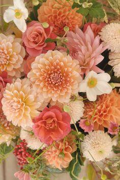 October bouquet de photo It was an arrangement full of dahlia '' Orange Flowers, Beautiful Flowers, Dahlia Flowers, Bouquet Flowers, Art Flowers, Paper Flowers, October Bouquet, Fleur Orange, Illustration Blume