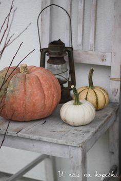 U nás na kopečku: podzimně, barevně Pumpkin, Autumn, Vegetables, Pumpkins, Fall Season, Fall, Vegetable Recipes, Squash, Veggies