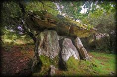 Gaulstown Portal Tomb near Waterford City in pasture land. http://www.megalithicireland.com/