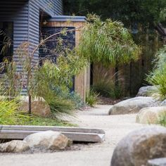Photograph portfolio of native gardens and landscapes designed and built by Australian Landscape designer Sam Cox. Australian Garden Design, Australian Native Garden, Dry Garden, Side Garden, Garden Art, Coastal Gardens, Beach Gardens, Landscaping With Rocks, Modern Landscaping