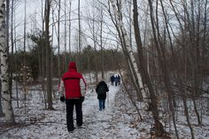 Take part in one of Step Outdoors' Winter Outing Series, which runs each weekend in January and February. Learn to snowshoe or ski, or go for a hike at one of many of Tioga County's scenic locations. Go to www.stepoutdoors.org for more information.