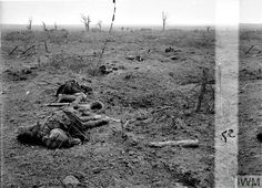 WWI, 20 Sept 1917; British dead on the battlefield near Zonnebeke. Battle of the Menin Road Ridge. Storming of Zonnebeke by 3rd Division. A view of the battlefield, showing casualties of a Highland Regiment. © IWM (Q 11657)