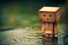 Danbo Broken Heart Danbo walking .