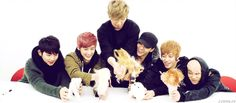Teen top, a group of 18~21 year old boys who enjoy playing with barbie dolls XD