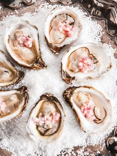 We love Malpeque oysters from P. and Village Bay oysters from New Brunswick. Served at oyster bars, these small, world famous beauties have a crisp, briny taste and a sweet finish. Raw Oysters, Raw Bars, Cafe Food, Fish And Seafood, Creative Food, Seafood Recipes, Yummy Food, Tasty, Food Photography