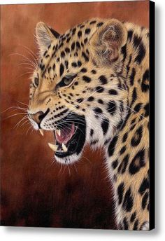 Amur Leopard Painting Canvas Print / Canvas Art By Rachel Stribbling. Wildlife Art / Animal Art.