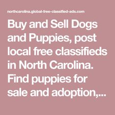 Buy and Sell Dogs and Puppies, post local free classifieds in North Carolina. Find puppies for sale and adoption, dogs for sale and adoption, yorkshire terriers, siberian husky puppies, bulldogs, german shepherds, labrador retrievers, beagles, golden retrievers, boxers, dachshunds, rottweilers and more on free claasifieds. The site is actively visited by hundreds of daily buyers from North Carolina , which helps ensure items sell quickly #dogsandpuppieshusky